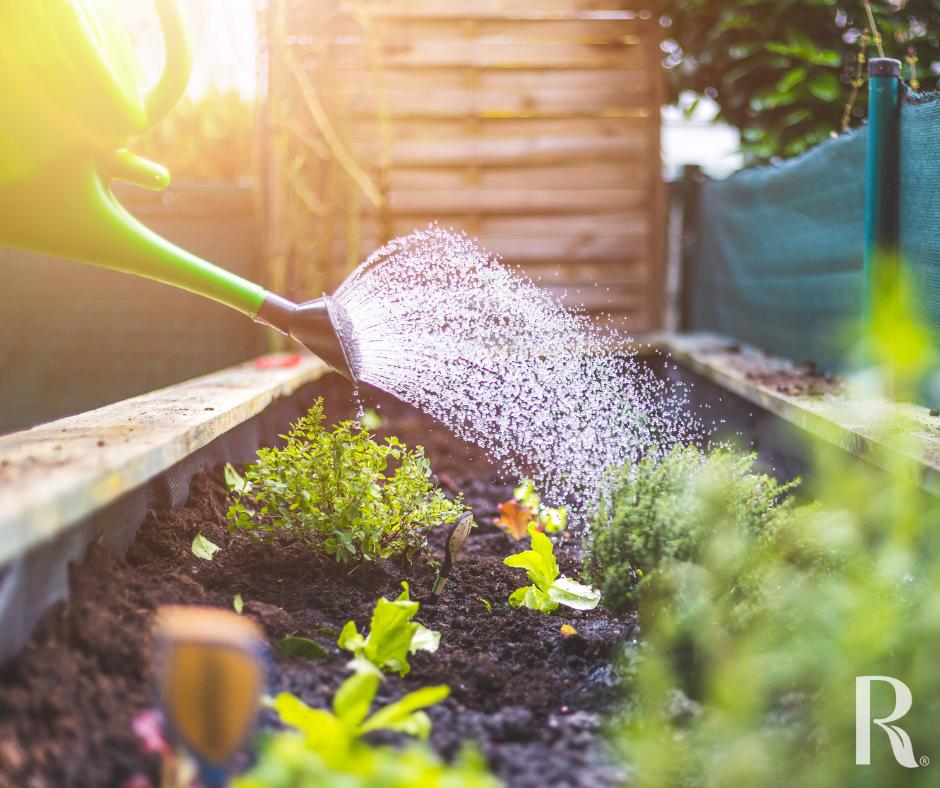 organic garden watering