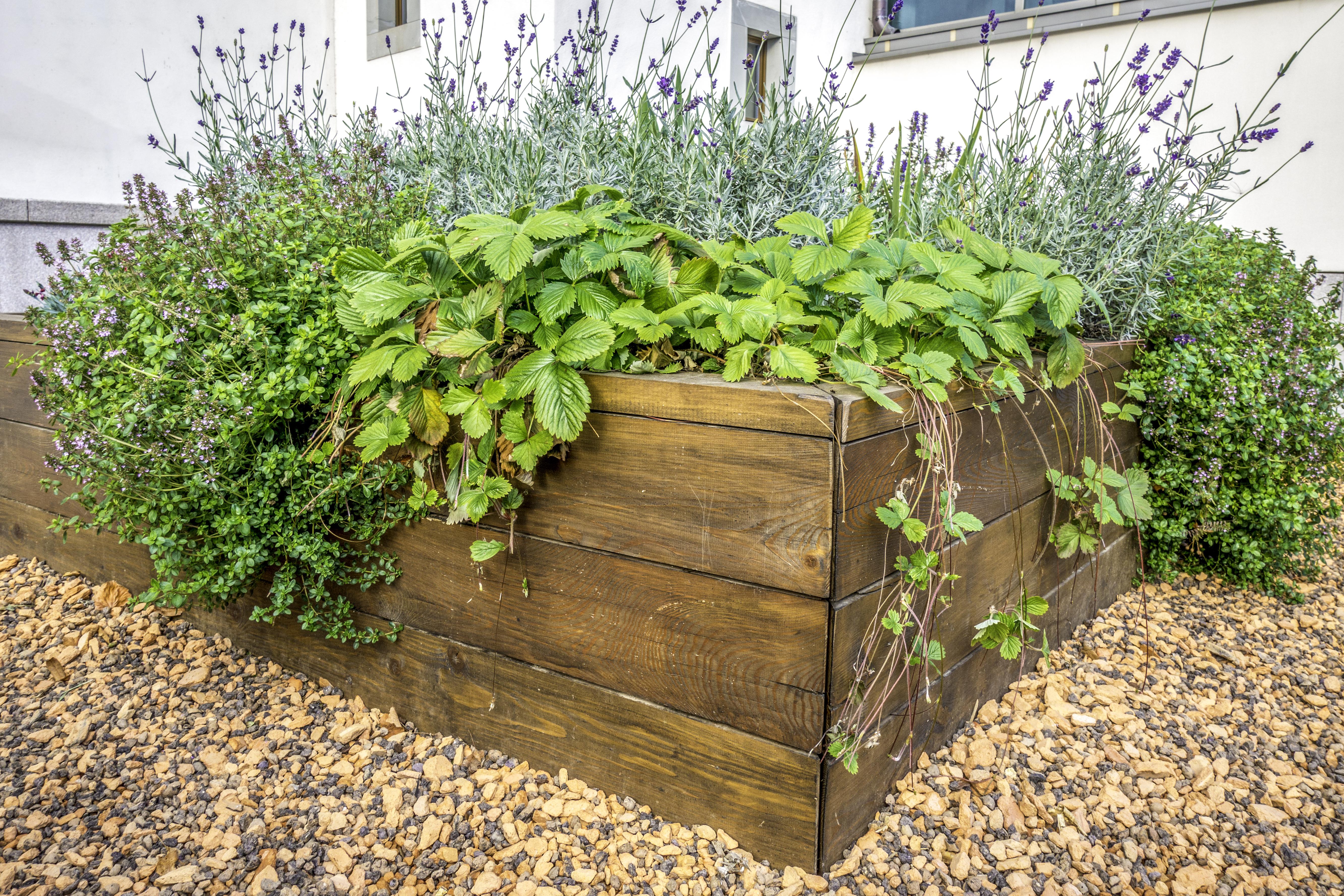 No Dig Raised Garden Bed